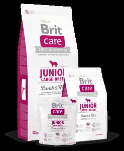 Brit-Care-Junior-Talie-Mare-Miel-si-Orez-Hrana-Caini-catelulgras