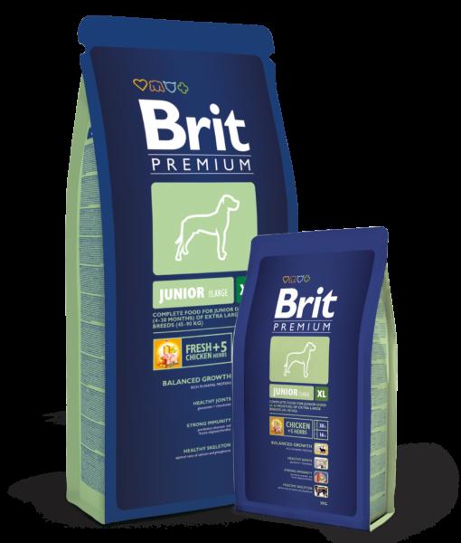 Brit-Premium-Junior-XLHrana-Caini-catelulgras