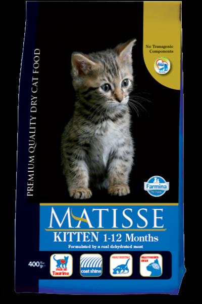 hrana-pisici-matisse-kitten