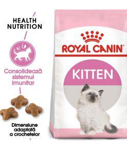 hrana uscata pisici royal canin kitten