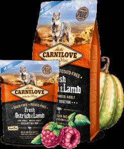 hrana caini Carnilove fresh ostrich lamb strut si miel