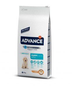 hrana uscata caini advance maxi puppy protect 12 kg