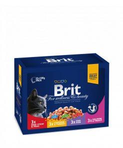 hrana umeda pisici brit premium cat family plate